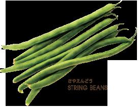 水戸冷凍食品 株式会社 ホームペ...
